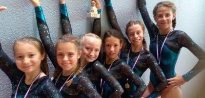 Equipe gymnastique BSMGYM
